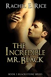 TheIncredibleMrBlack-RachelERice-200x300